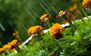 Погода в Украине: чего ждать на майские выходные?