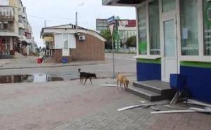 Блокадный Луганск: обстреляна улица Оборонная, разрушен подземный переход возле рынка