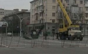 В Луганске начали устанавливать новогоднюю елку (фото)