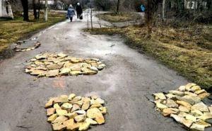 В 2015 Украина не будет строить новые автомобильные дороги и ж/д пути