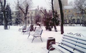 С утра в Луганске была слышна стрельба. —Местные жители