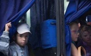 В Украине уже около миллиона официально зарегистрированных беженцев из зоны АТО