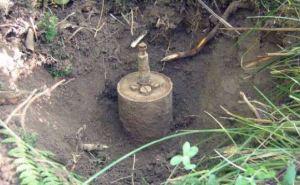 В Луганской области на противопехотной мине подорвалась 18-летняя девушка