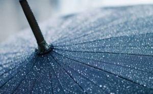 Погода в Луганске на Троицу: дождь