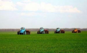 Посевная в Донецкой и Луганской области проведена почти на 100%