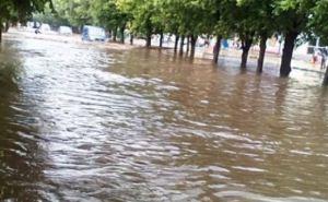 Ливень затопил улицы Харькова в считанные минуты