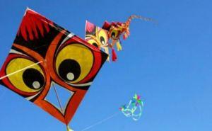 Лето вашей мечты: в Луганске проведут мастер-класс по изготовлению воздушных змеев