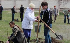 В Луганске продолжается борьба со свалками