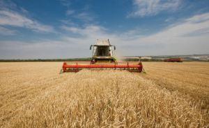 В Луганской области закончили сбор урожая