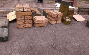 В Луганской области обнаружили один из крупнейших тайников боеприпасов (фото, видео)