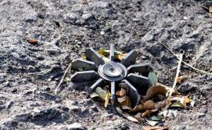 В ОБСЕ считают, что необходимо огородить оба берега реки в Станице Луганской