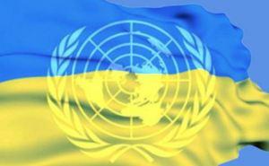 Миссия ООН проверит факты массовых задержаний на подконтрольном Украине Донбассе