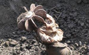 В Станично-Луганском районе на мине подорвались два мирных жителя
