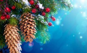 Какая погода ждет жителей Луганска на Новый год?