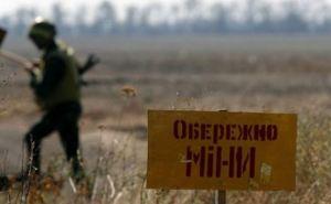 Масштабный процесс разминирования на Донбассе начнется весной