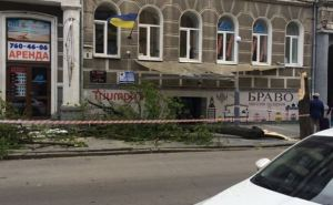 В Харькове на женщину упало дерево (фото)