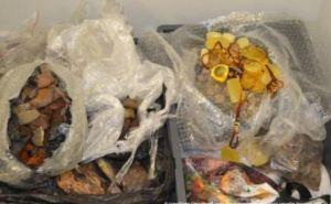 В харьковском аэропорту задержали двух китаянок с 35-ю  килограммами  янтаря
