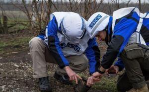 На  Донбассе  по-прежнему много мин и неразорвавшихся снарядов. —СММ