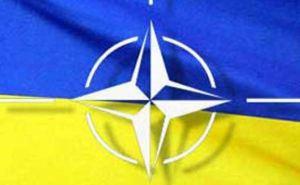НАТО ждет от Украины отчет по реализации «Минска-2». —СМИ