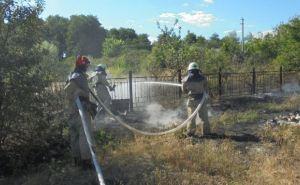 В Станично-Луганском районе ликвидировали возгорание сухой травы