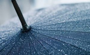 В Луганскую область идут грозовые дожди