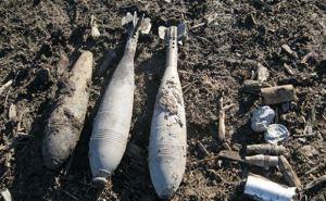 Разминирование Луганской области: за сутки обнаружены 90 боеприпасов