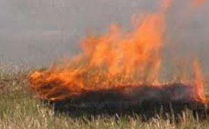 В Харьковской области объявлен чрезвычайный уровень пожароопасности
