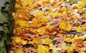 Осень наступает. Синоптики прогнозируют похолодание