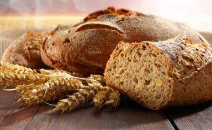 В самопровозглашенной ЛНР хлеба хватит до нового урожая 2017 года