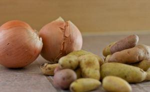 В Луганской области подешевели сезонные овощи