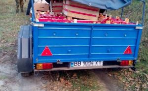 В Трехизбенке задержали груз овощей, незаконно следующий в ЛНР (фото)