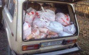 В Трехизбенке задержали мужчину, который вез полторы тонны мяса в ЛНР (фото)