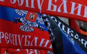 ДНР планирует открыть вЕС два представительских центра