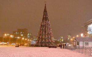 В Харькове установили главную городскую елку (фото)