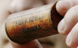 Возле пункта пропуска в Станице Луганской нашли тайник со взрывчаткой