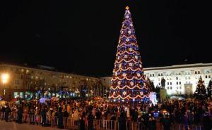 Главную новогоднюю елку Луганска украсят новыми игрушками