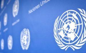 В следующем году ООН и Красный Крест выделят Донбассу 274 млн долларов