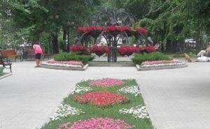 В Донецке планируют высадить больше 700 тысяч цветов