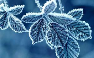 В Луганске похолодает до -25°C