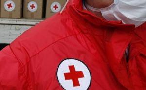 Красный Крест передал жителям самопровозглашенной ЛНР 424 тонны гуманитарки