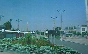 В Луганске весной начнется озеленение разворотного кольца возле путепровода