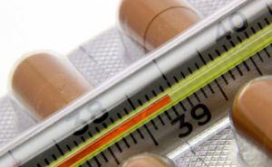 В Луганске уровень заболеваемости ОРВИ и гриппом на 35% ниже эпидпорога