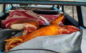 Жительницу Станицы Луганской поймали на попытке переправить в ЛНР 500кг мяса (фото)