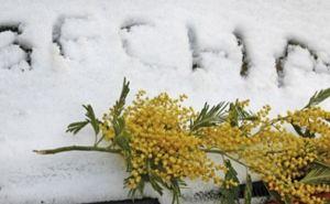 В Харькове резко потеплеет