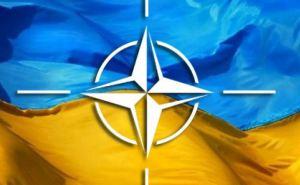 Вступление в НАТО поддерживают 72% украинцев. —Опрос