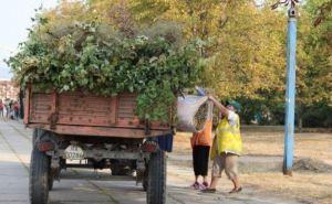 В Луганске пройдет общегородской субботник