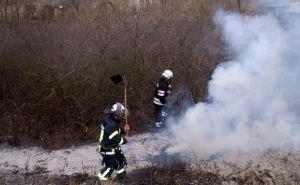 В Луганской области за сутки произошло 13 возгораний сухой травы