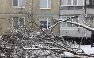 В Харькове из-за непогоды обесточено 40 многоквартирных домов