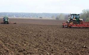 В самопровозглашенной ЛНР завершился сев ранних зерновых