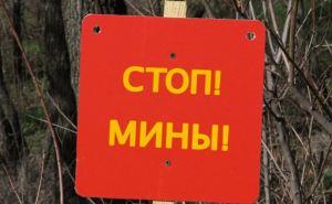 В поселке Зеленая Роща на неизвестном устройстве подорвался житель Луганска